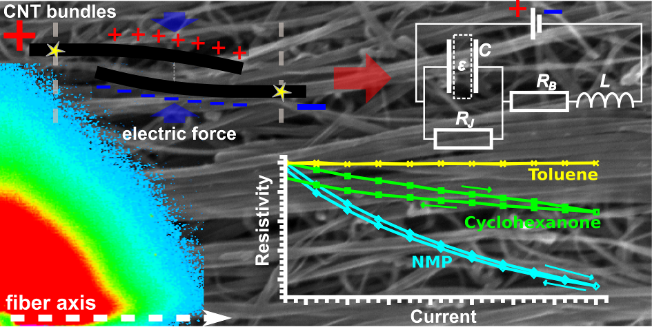 New electro-structural effect observed in CNT fibres