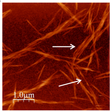 Origin of chiral interactions in cellulose supra-molecular microfibrils